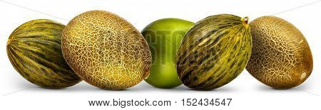 Group of melons and pomelo isolated on white background.