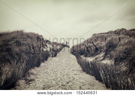footpath through dunes at the North sea beach in Germany.