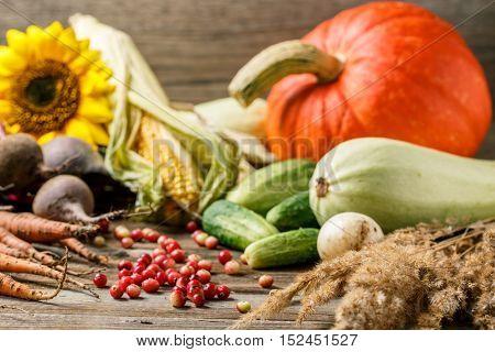 Berries and rustic veggies