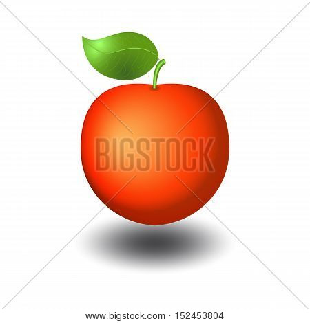 Red apple with shadow vector illustration with realistic gradient effect. Web design element icon or pictogram of ripe fruit with leaf.