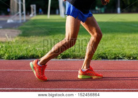 Muscular legs of men in shorts and sports shoes on running track at street stadium