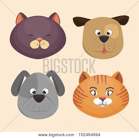 kitten and puppy faces icons design vector illustration