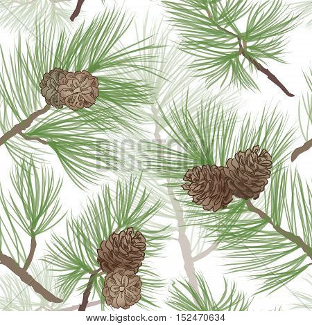 Branch of Christmas tree with pine cones. nature background. WInter forest pincone seamless pattern