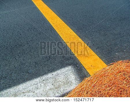 Asphalt background with white and yellow stripes. Dry grass lays on the asphalt