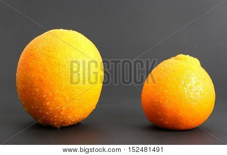 oranges on a surface with an isolated background