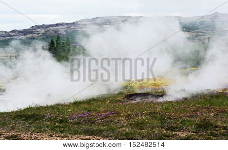 Steam vents from the earth in the geothermal region of Iceland.