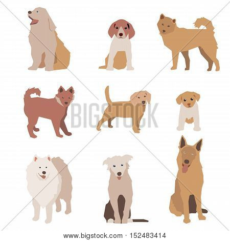 Set of dog character illustration. Dogs isolated on white. Vector eps10