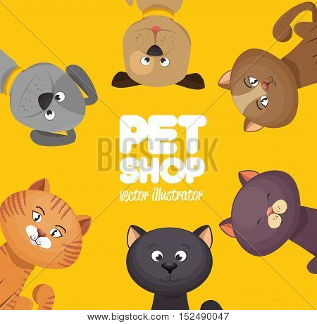 poster pet shop cute cats yellow background vector illustration eps 10