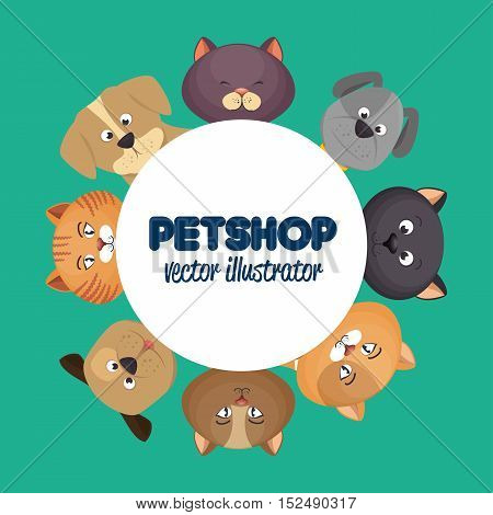 pet shop poster with lovely cats and green background vector illustration