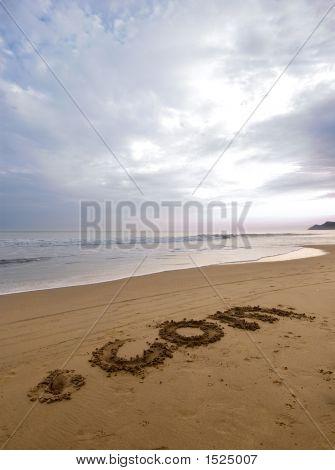 Dot Com On The Sand 2