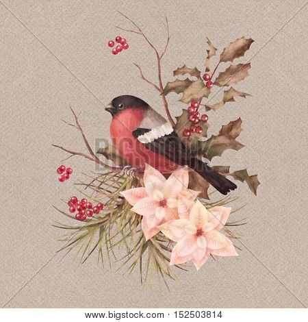Christmas retro watercolor decorative composition. Bird bullfinch poinsettia flowers with Rowan and Holly branch