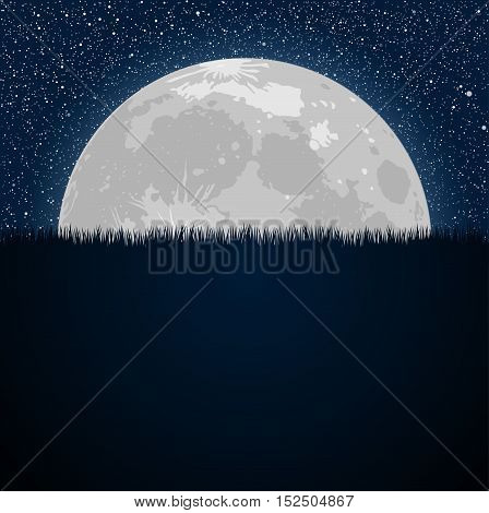 Silhouette of grass of full moon on a background of the starry dark blue sky. Eps 10. Moon. Star. Night sky. Grass.
