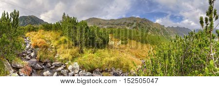 Beautiful mountain panorama. Mountain stream in the autumn scenery in High Tatra Slovakia.
