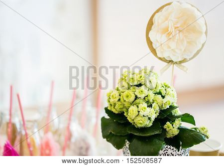 catering, holidays and celebration concept - close up of festive flower decoration