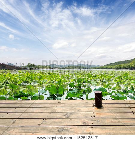 Hangzhou West Lake in the summer landscape