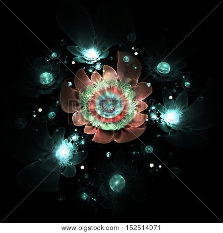 Abstract colorful blue and red flowers on black background. Fantasy fractal design for posters or t-shirts. Digital art. 3D rendering.
