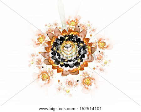 Abstract colorful black and orange flowers on white background. Fantasy fractal design for posters or t-shirts. Digital art. 3D rendering.