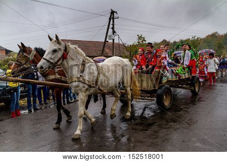 Bobovysche Ukraine - 2016 October 16: Locals in Hutsul national costumes with baskets of grapes go to etnofestyval Bobovyschanske Grono-2016.