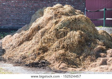 A manure pile on a farm in the background bricks.