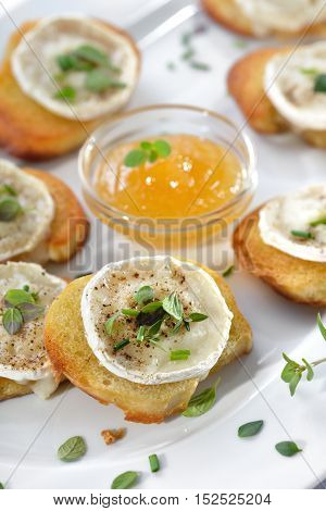 Baked spicy crostini appetizers with goat cheese and fresh herbs served on a white serving plate with fig honey