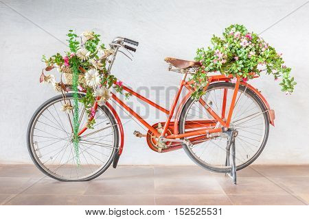 Vintage red bicycle with flower baskets parking against cement wall background.
