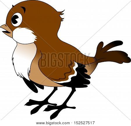 Vector image of the Cartoon smiling sparrow illustration