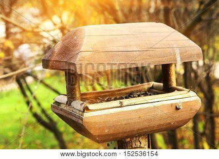 bird feeder manger wooden close up photo on the sunny autumn park background