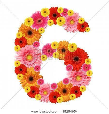 6, arabic numeral
