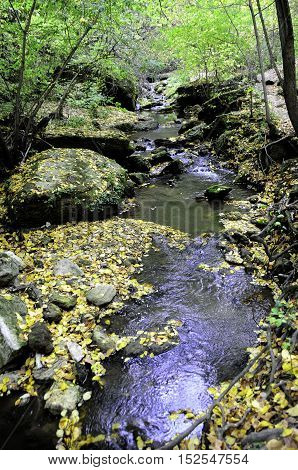 Tiny mountain river near the waterfall in monastery Saharna Republic of Moldova. mountain river in the forest