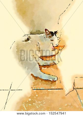 illustration with a cute cat lay down at the wall in the morning light.
