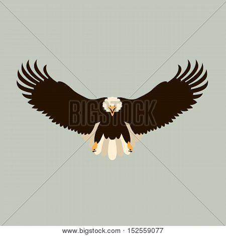 Bald eagle vector illustration  black silhouette side front