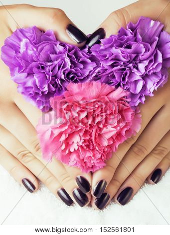 manicure pedicure with flower close up isolated on white perfect shape hands spa salon, modern dark mani
