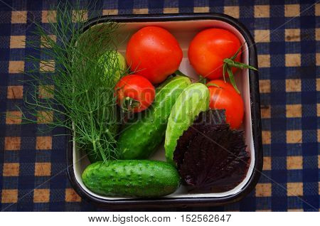 Top view of Salad veggie is breakfast for healthy, tomatoes, cucumber, green