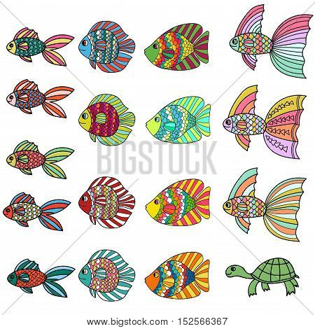 Colorful cute cartoon doodle fish set. Hand drawn thin line tropical aquarium fish and turtle icon collection isolated on white background. Vector illustration.