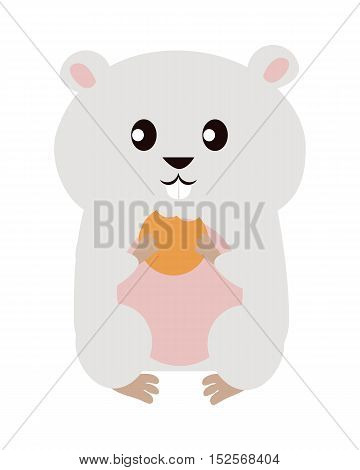 Funny hamster isolated on white background. Gray hamster with pink ears and belly siting and eat his food.