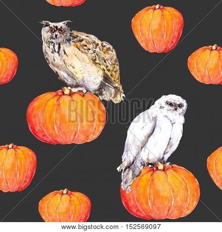 Owl on pumpkin. Halloween watercolor repeating pattern