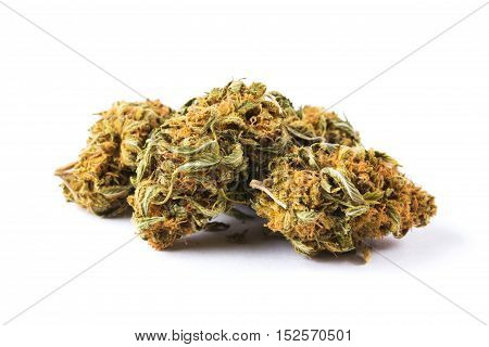 Marijuana buds isolated on white background. Closeup