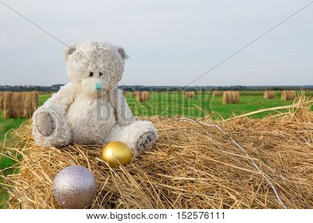 teddy bear in the harvested wheat field sitting on the haystack