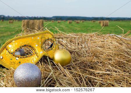 an elegant carnival mask in Golden wheat field