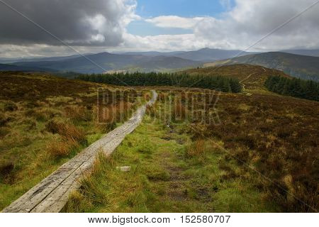 Wicklow way trail leading to the vibrant irish landscape