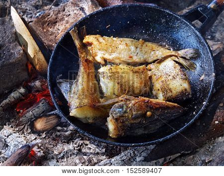 Fried river fish in a cast iron skillet on hot ashes from the fire outdoors.