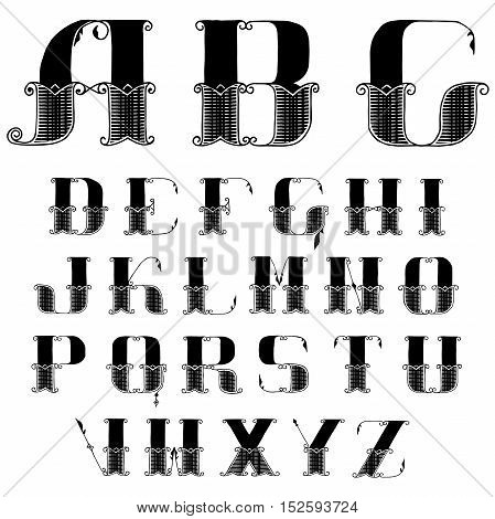 vector beautiful vintage font with swirls painted hands