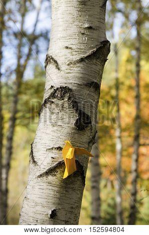 Yellow paper bird vertical shot in a birch wood