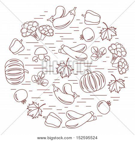 Set Of Autumn Seasonal Vegetables In Circle. Tomato, Pepper, Zucchini And Other Fall Vegetables For