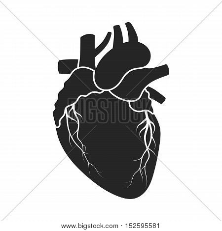 Heart icon in black style isolated on white background. Organs symbol vector illustration.