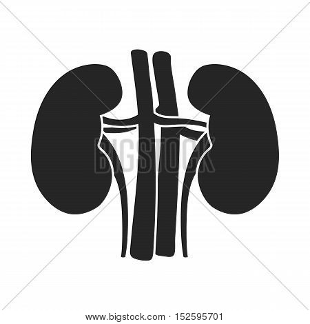 Kidney icon in black style isolated on white background. Organs symbol vector illustration.