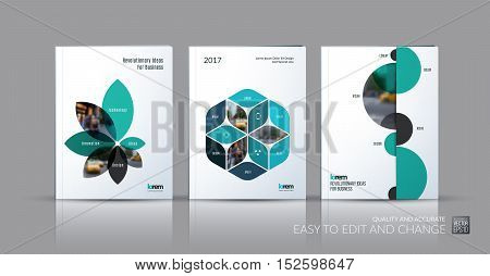 Brochure template layout collection, cover design annual report, magazine, flyer in A4 with flower petals shapes, rhombus, circle for business, nature idea. Abstract vector design set.