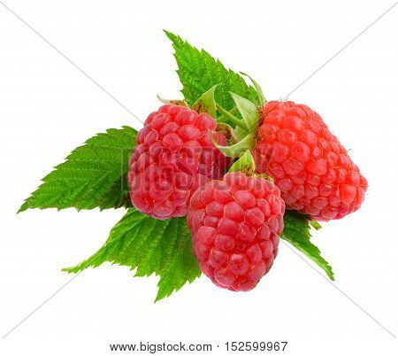 Raspberries with leaf isolated on white background