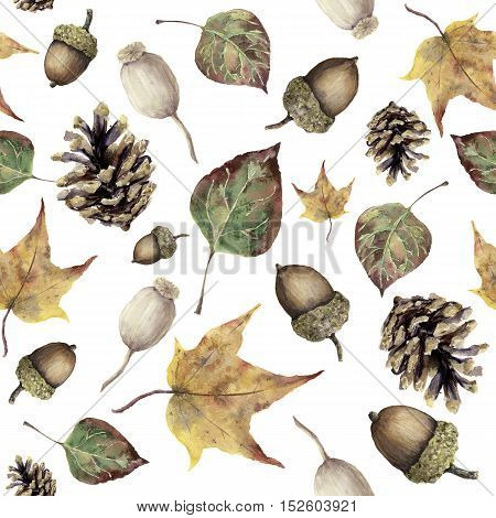 Watercolor autumn forest seamless pattern. Hand painted pine cone, acorn, berry and yellow and green fall leaves ornament isolated on white background. Botanical illustration for design, print, fabric.