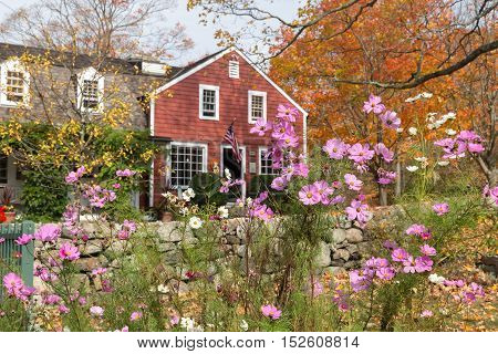 View of Visitor's Center at Weir Farm a National Historic Site in Wilton CT. Focus is on cosmos flowers in the foreground.